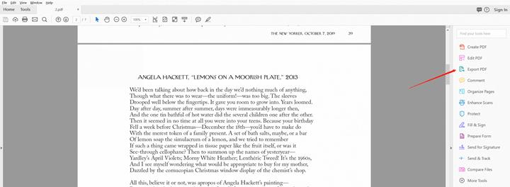 export pdf file