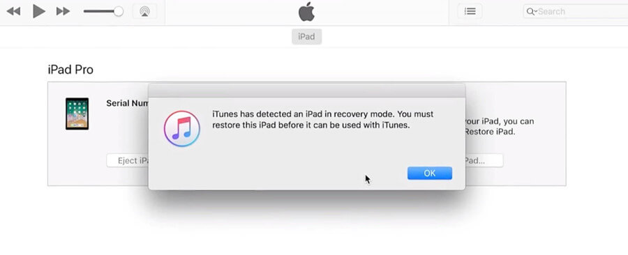 itunes detecred an ipad in recovery mode